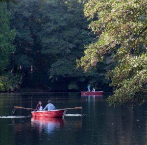 Neuer See Tiergarten